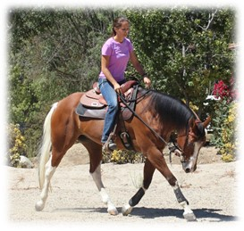 Melissa moving out with Jete a horse in training
